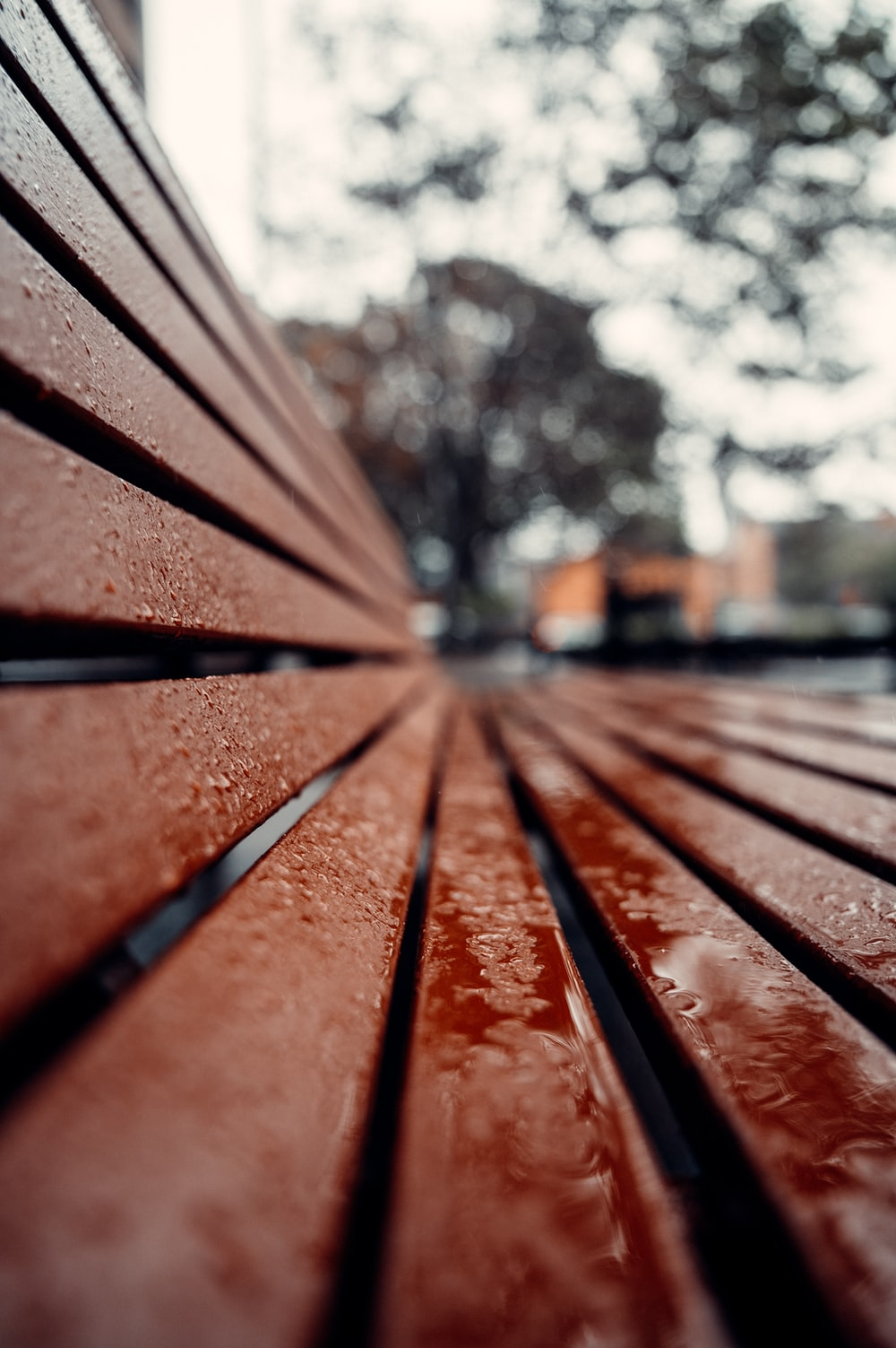 brown wooden bench near trees during daytime
