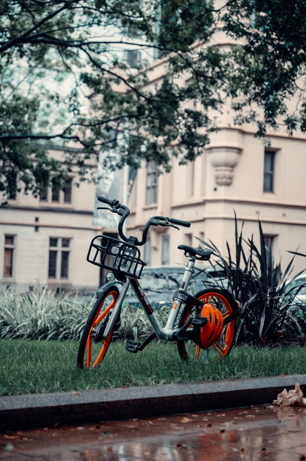 black and orange bicycle on green grass field during daytime