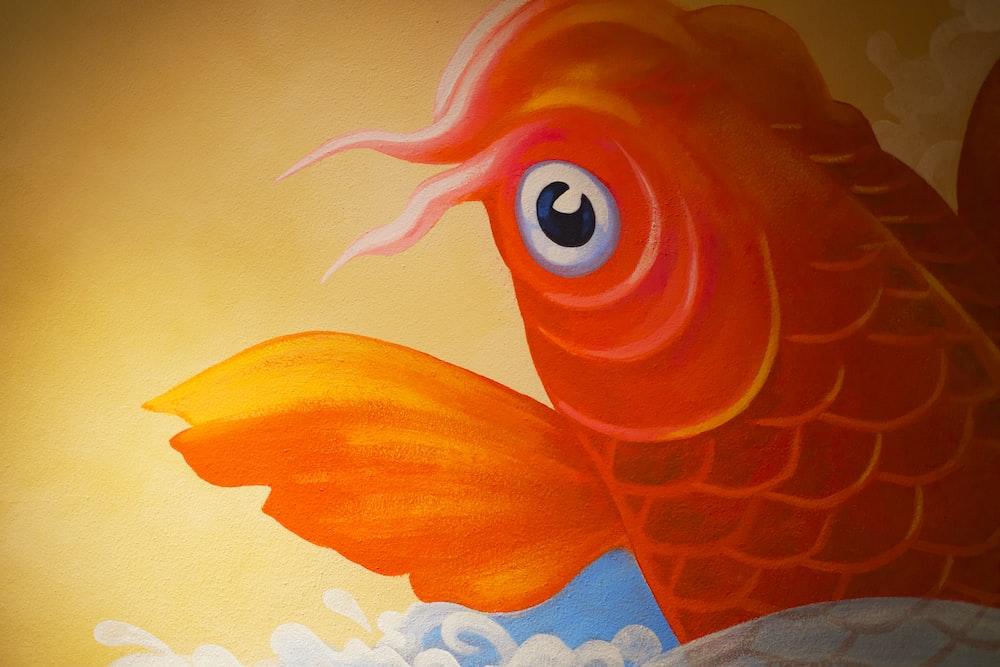 orange and white fish illustration