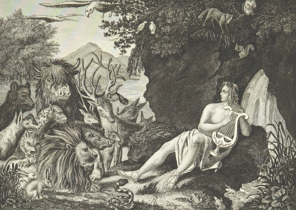 woman in dress sitting on rock sketch
