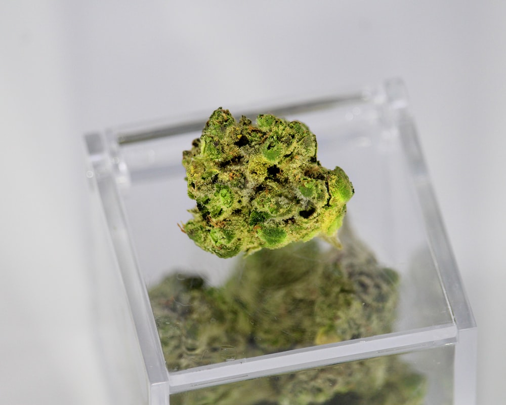 green kush in clear plastic container