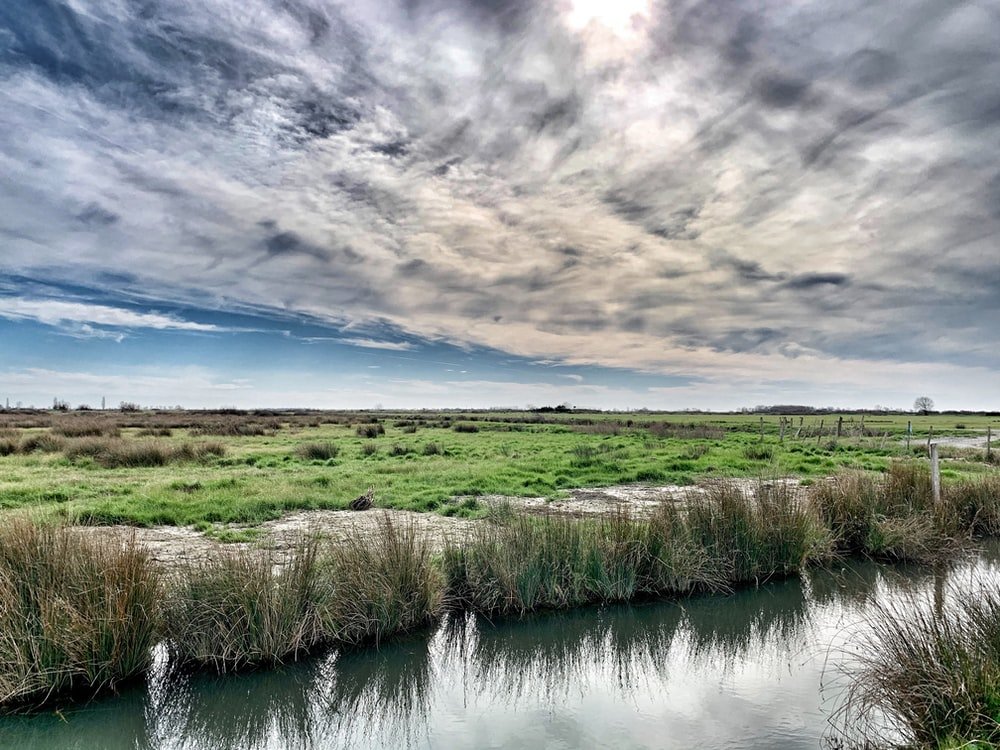 green grass field beside river under cloudy sky during daytime