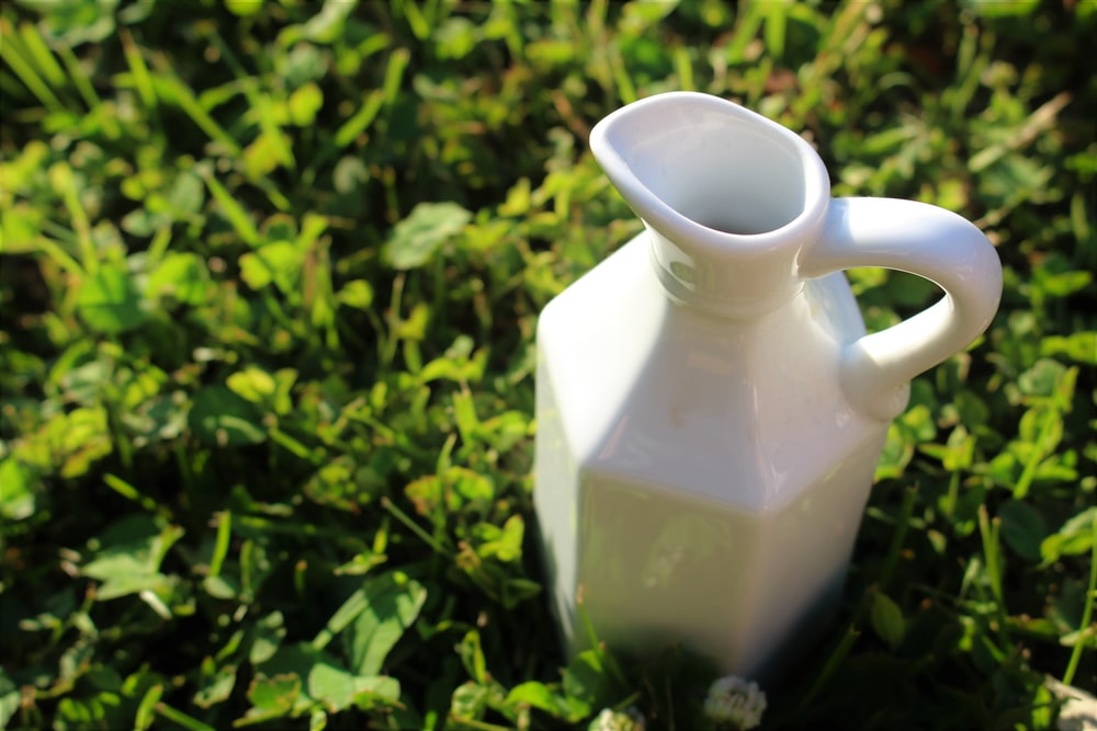 white ceramic pitcher on green grass