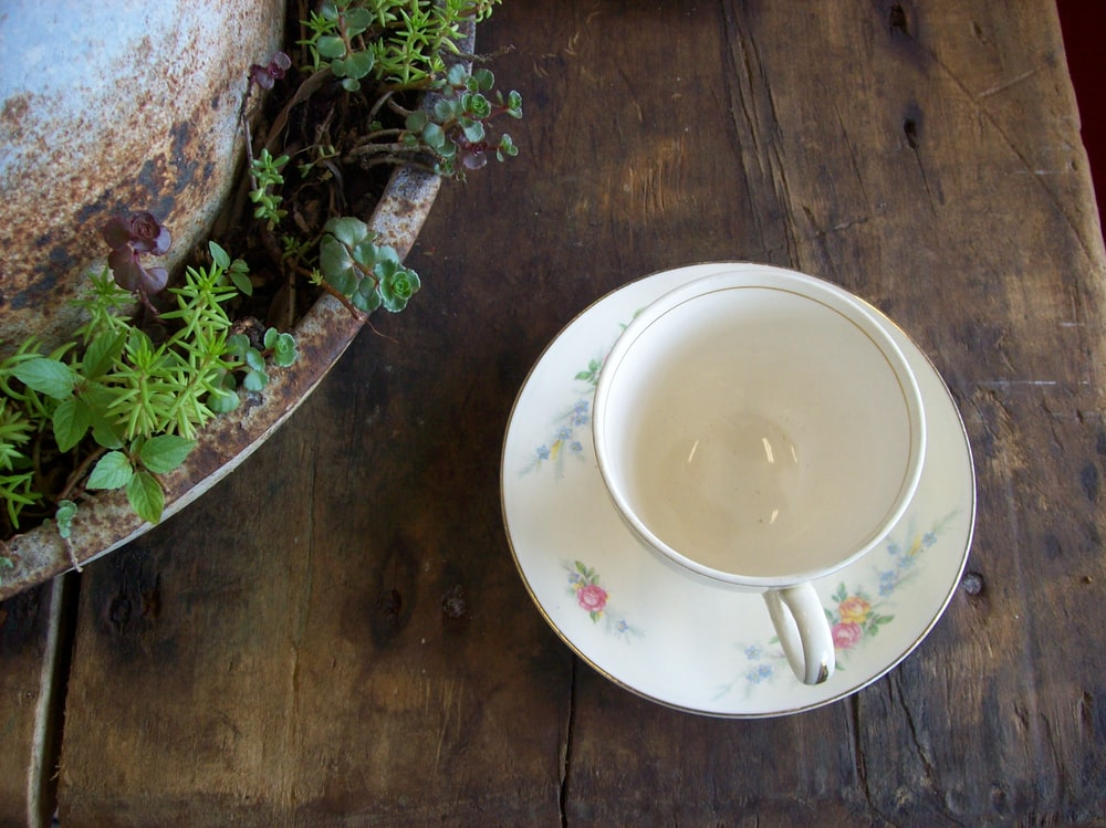white ceramic round plate on brown wooden table