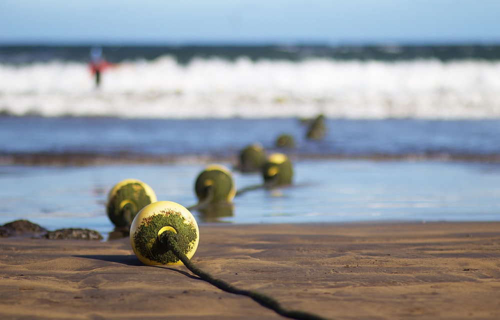 green fruit on beach during daytime