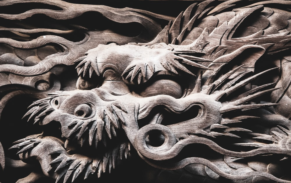 brown and black dragon illustration