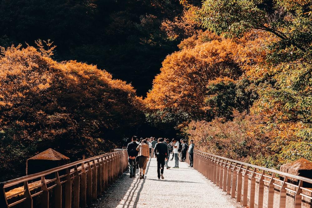 people walking on gray concrete bridge between trees during daytime
