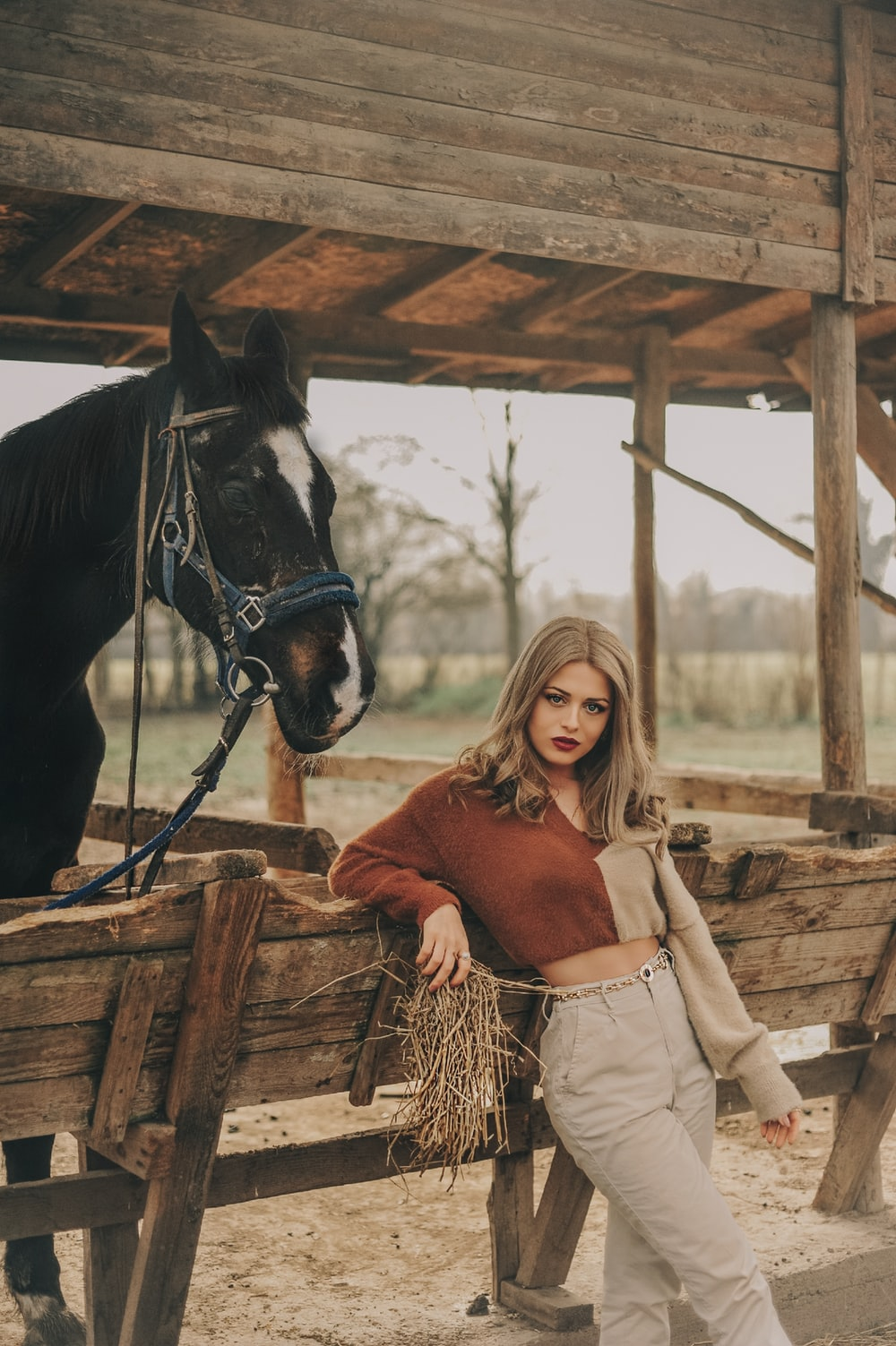 woman in brown sweater riding black horse