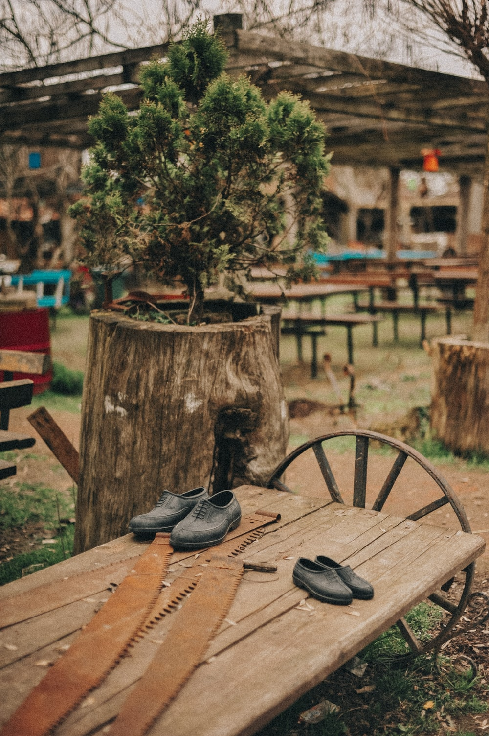 black leather shoes on brown wooden table