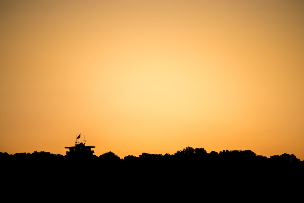 silhouette of trees during sunset