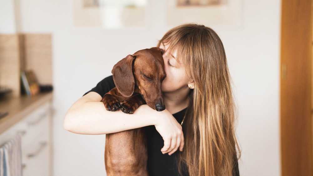 woman in black tank top hugging brown short coated dog