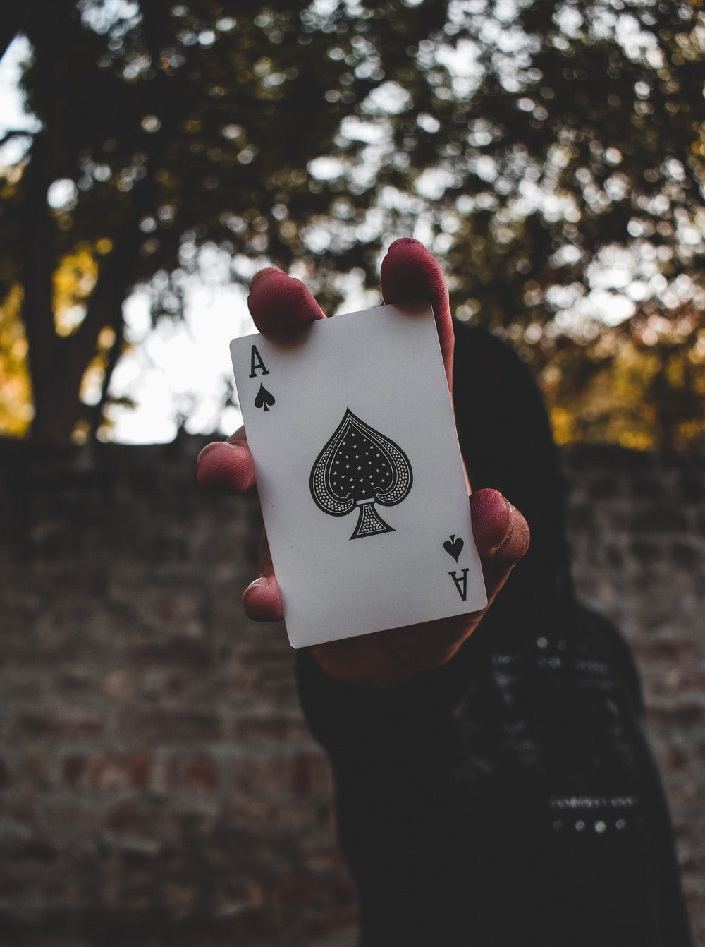 person holding ace of spade playing card