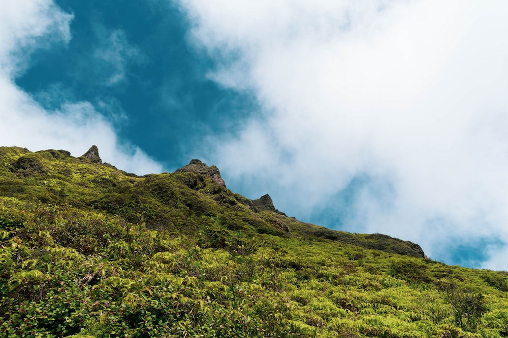 green grass field on mountain under white clouds during daytime