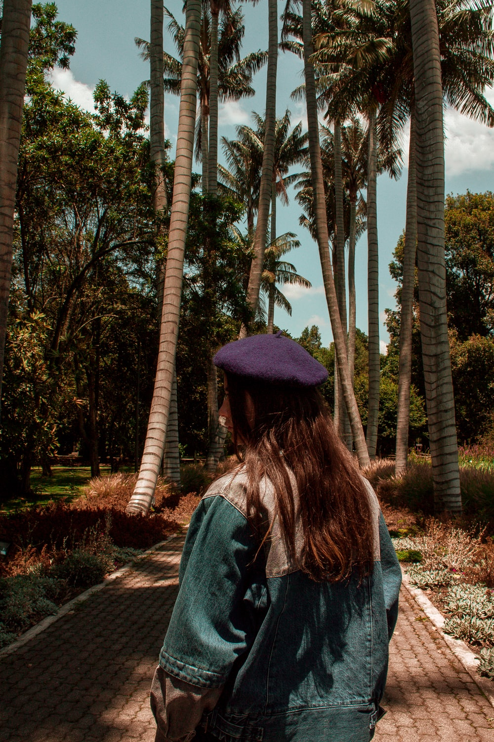 woman in blue denim jacket and black hat standing near palm trees during daytime