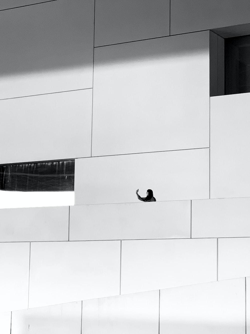 black bird on white wall
