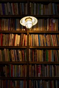 My room                                               (My mind) library stories