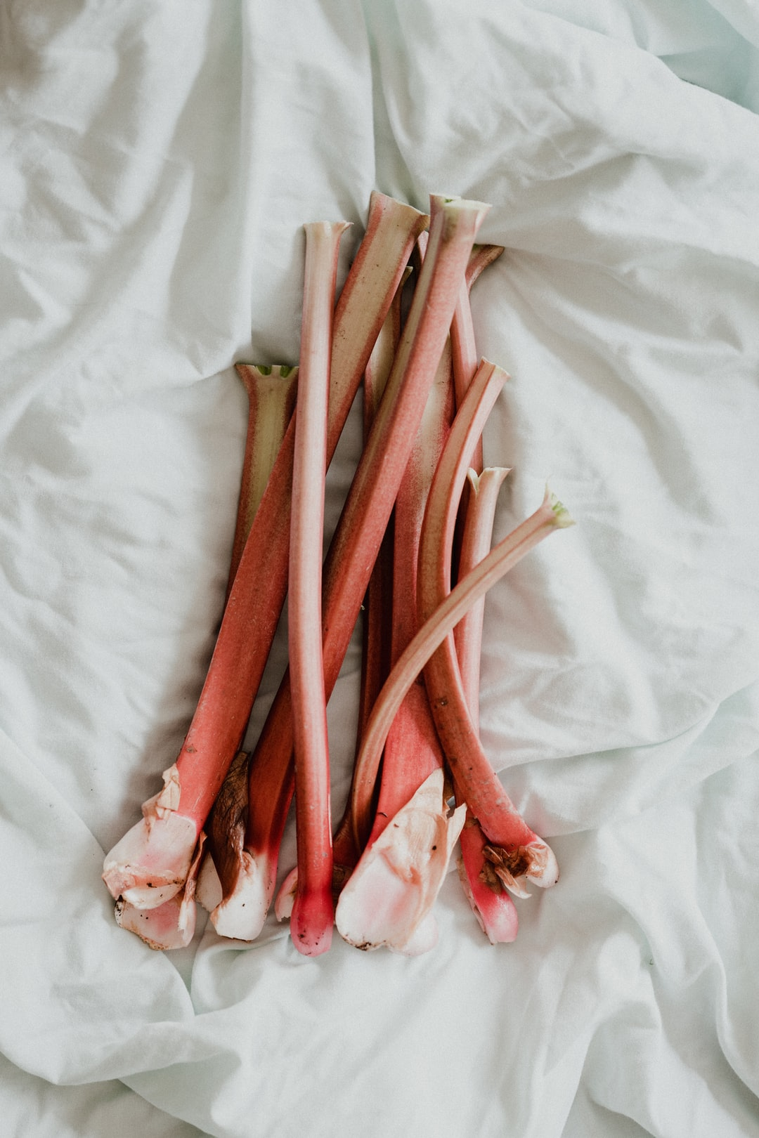Rhubarb, fresh from the garden