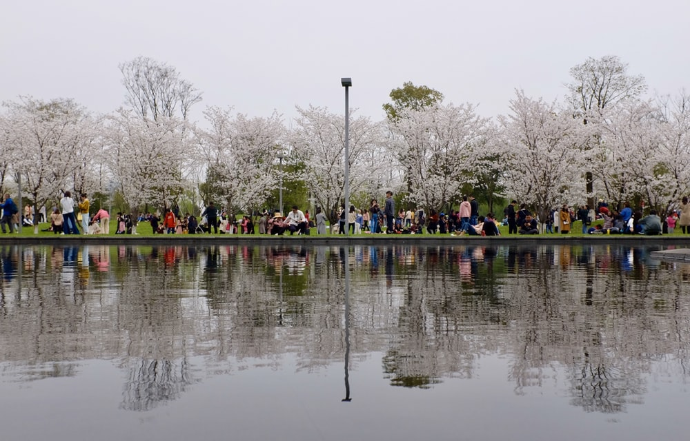 people sitting on bench near body of water during daytime