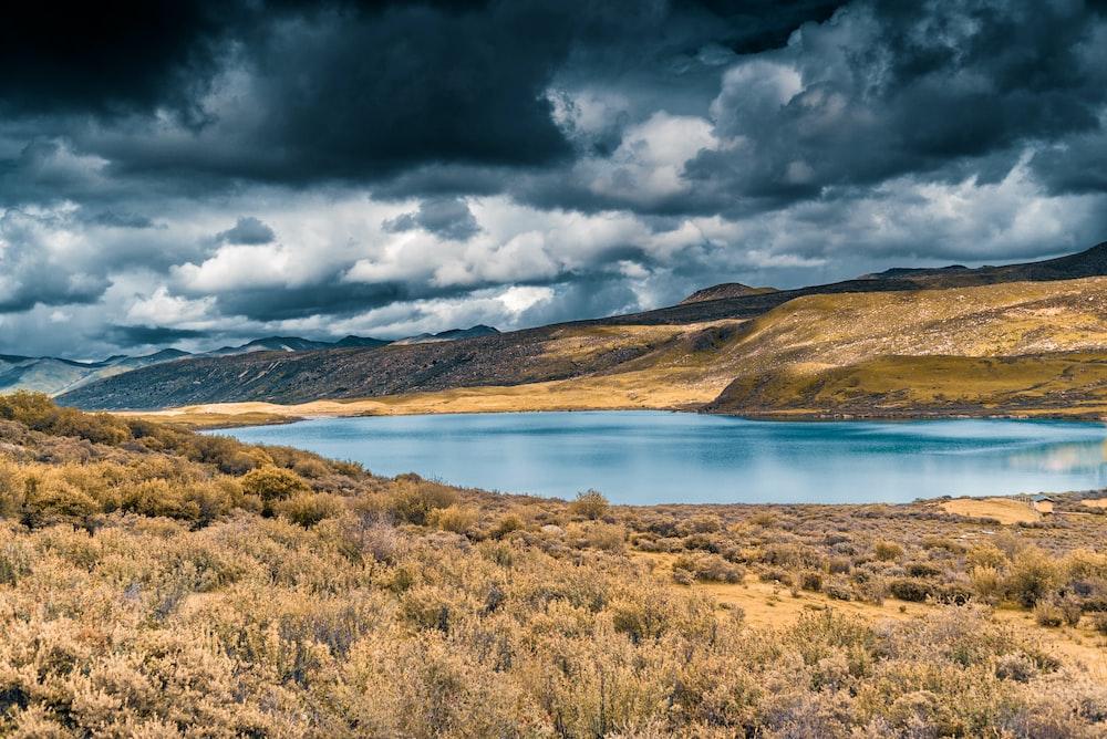 brown grass field near lake under gray clouds