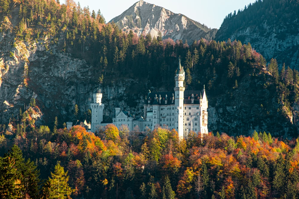 white and black castle surrounded by trees and mountains