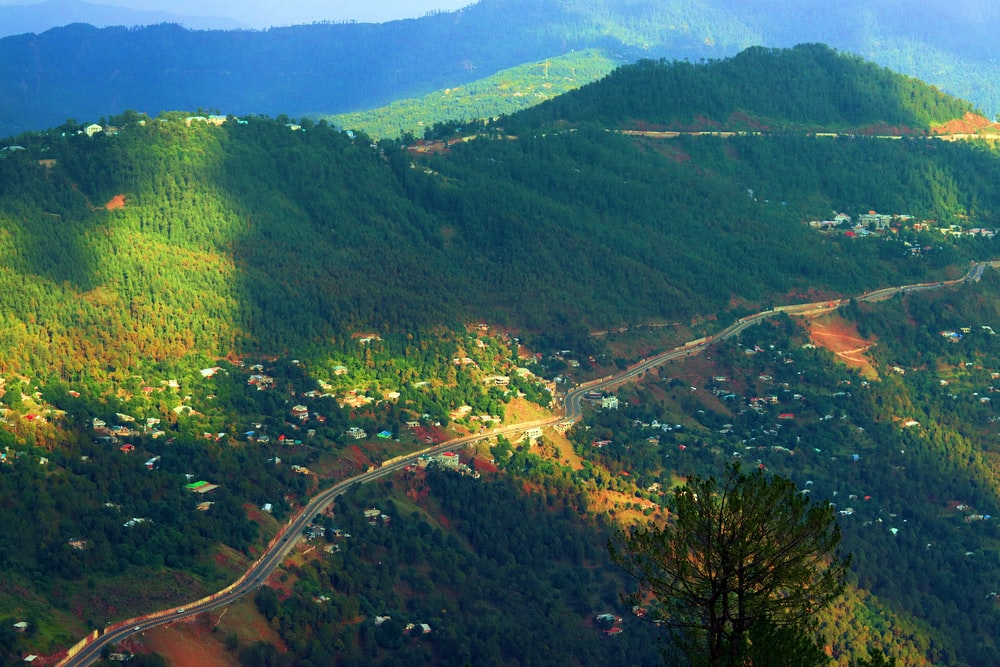 aerial view of green trees and mountains during daytime