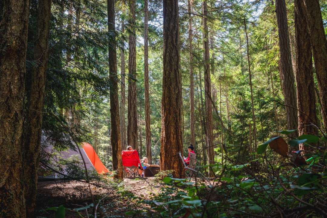 Camping family relaxing in the sun amongst the forest