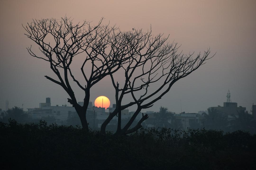 A glorious sunrise on a misty morning