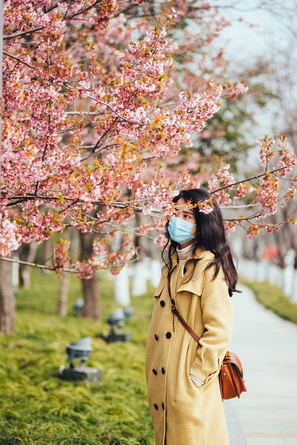 woman in brown coat standing under pink cherry blossom tree during daytime