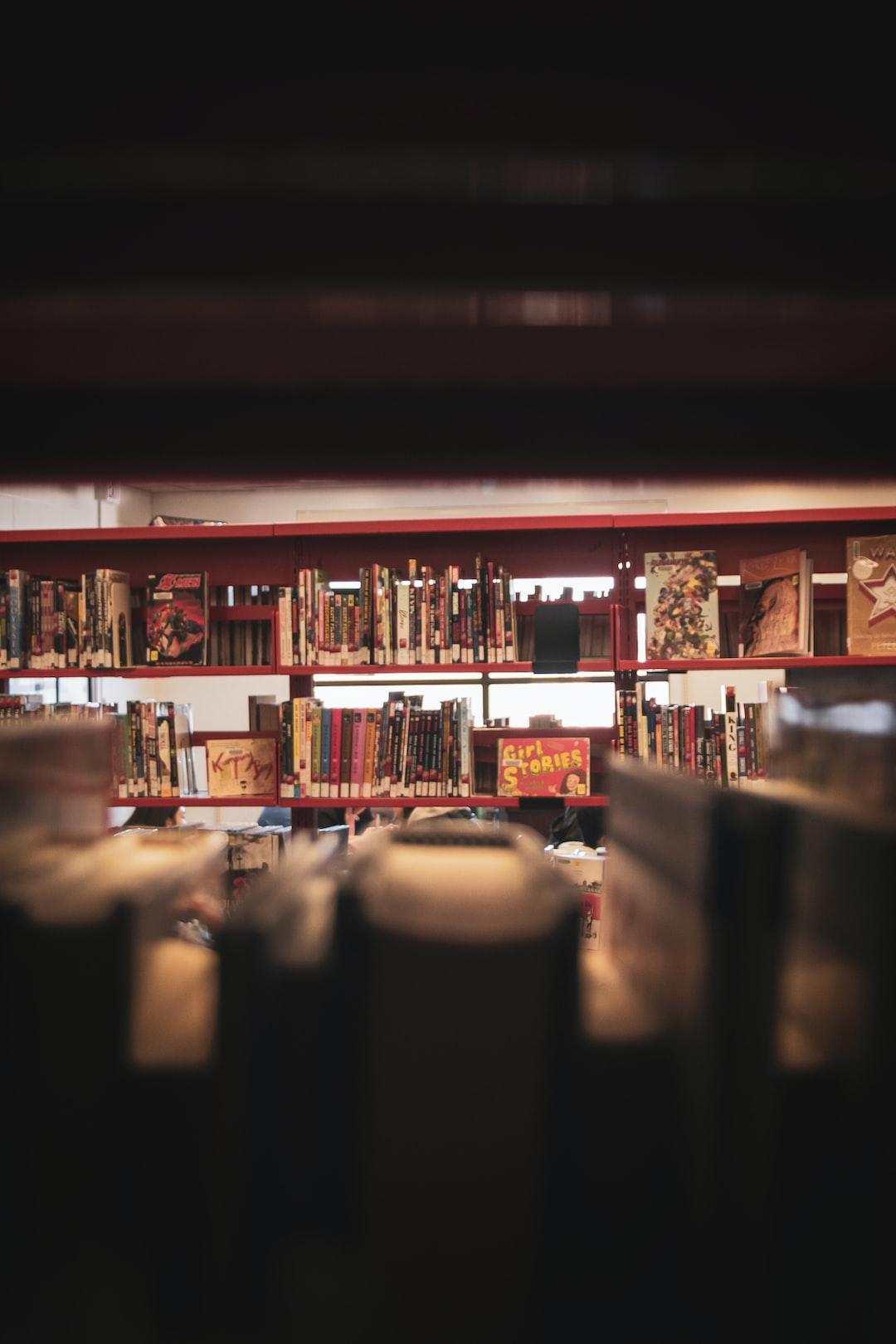 Looking through the bookshelves