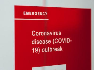 """Capua: """"Se il virus fosse stato creato in laboratorio salta tutto"""""""