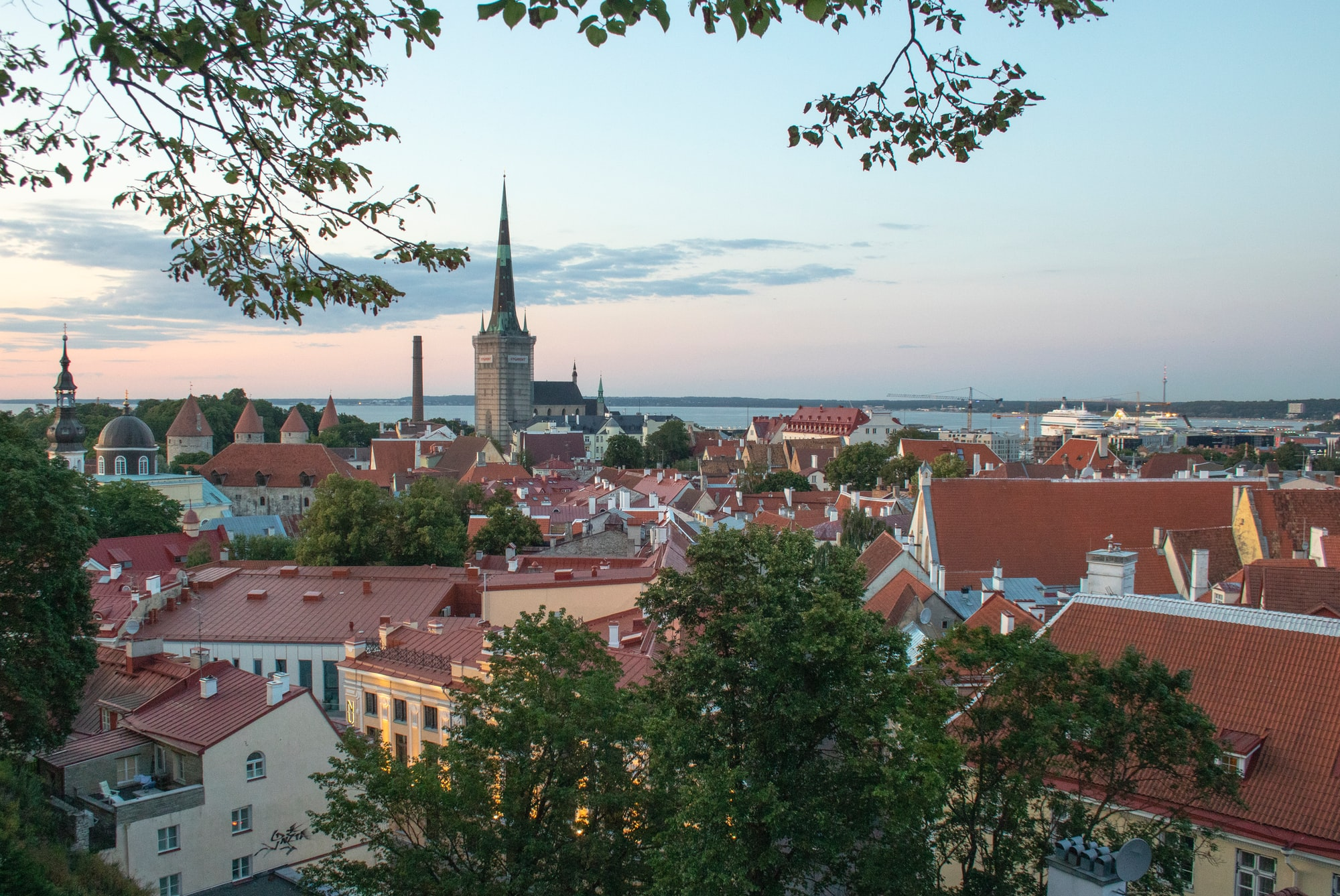 Estonia's Case for the Digital Health Capital of the World