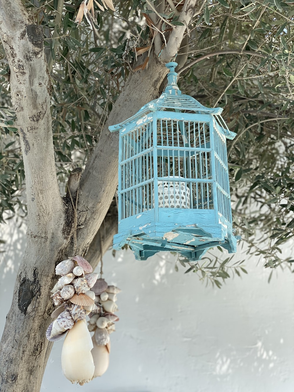 blue wooden bird cage on brown tree