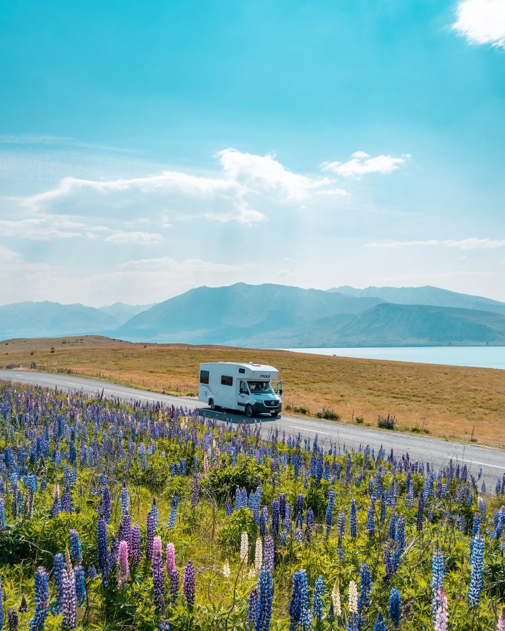 white van on road near green grass field during daytime