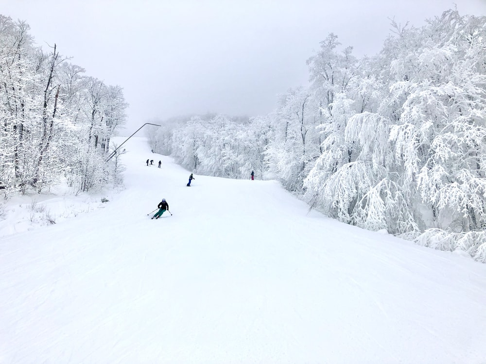 person in black jacket and black pants riding on snow ski during daytime