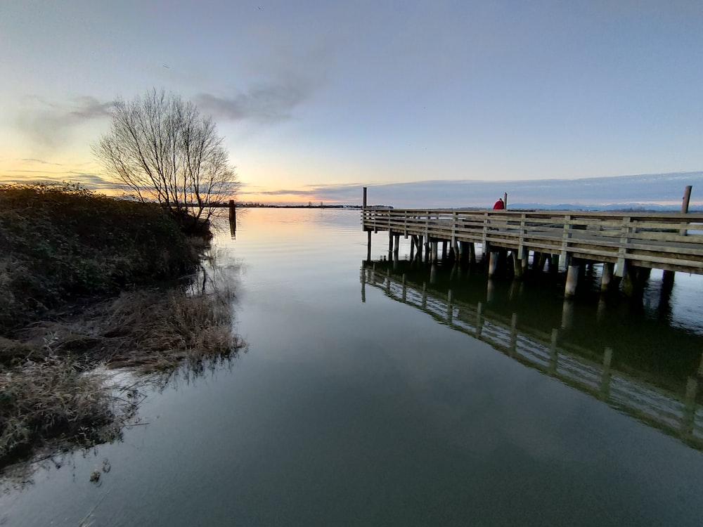 brown wooden dock on lake during daytime