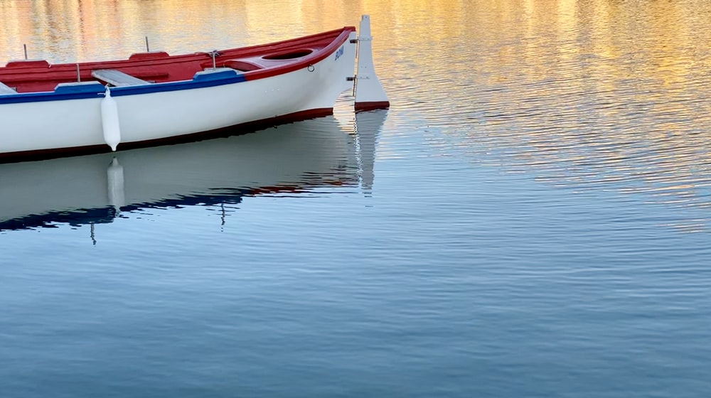white and red boat on body of water during daytime