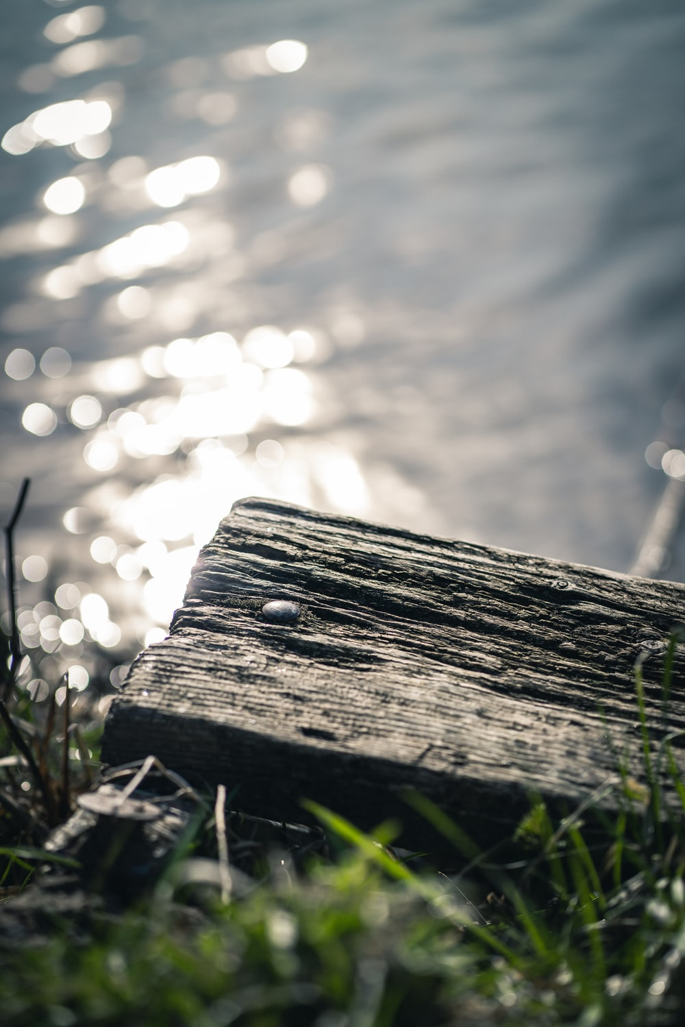 brown wooden plank on green grass during daytime