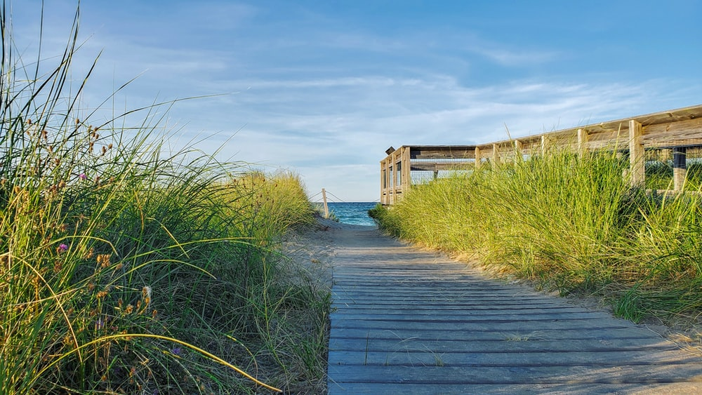 brown wooden pathway between green grass field under blue sky during daytime