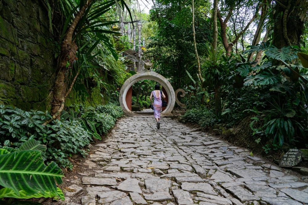 girl in pink jacket walking on pathway between green trees during daytime