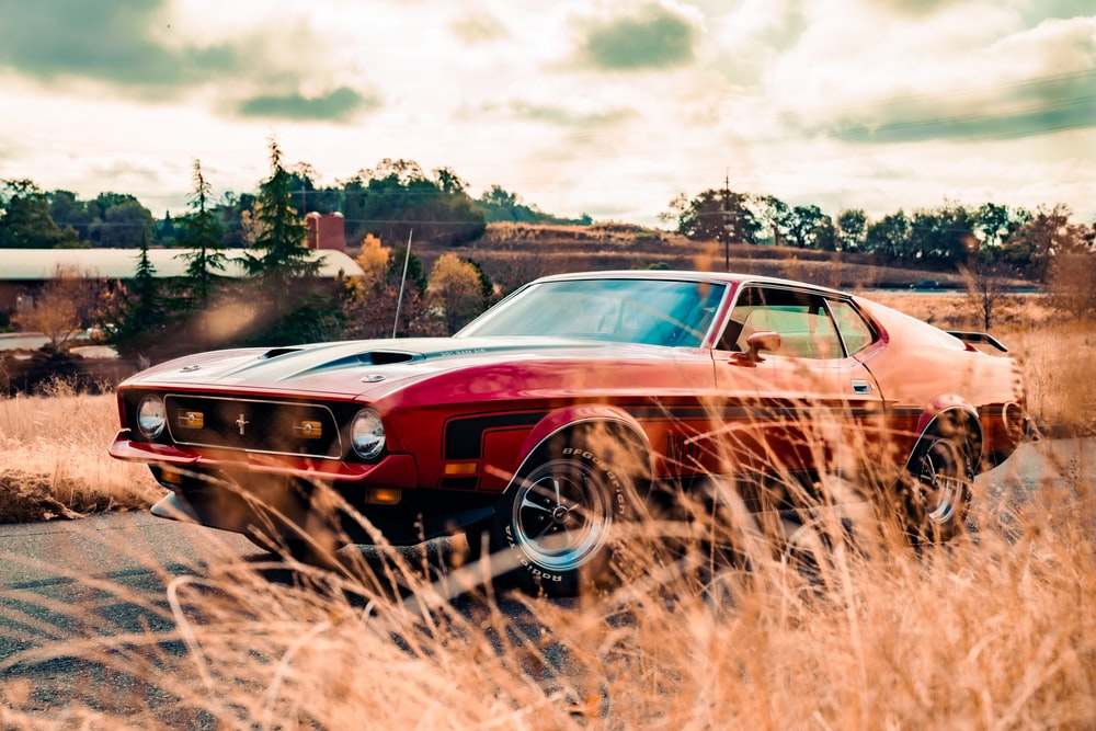 red and black muscle car on brown field during daytime