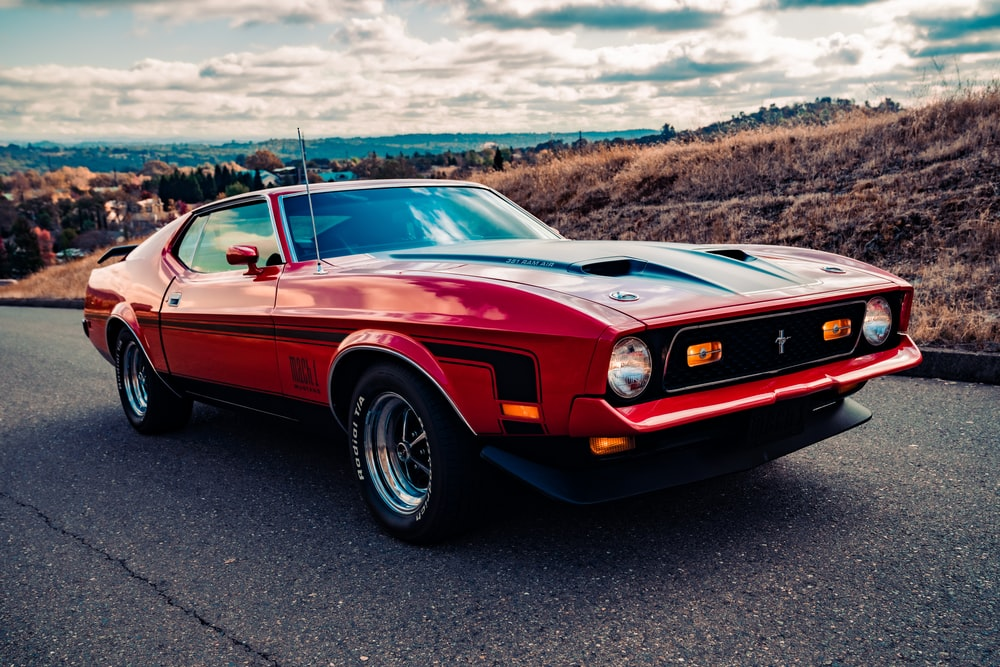 Mustang Wallpapers: Free HD Download [500+ HQ] | Unsplash
