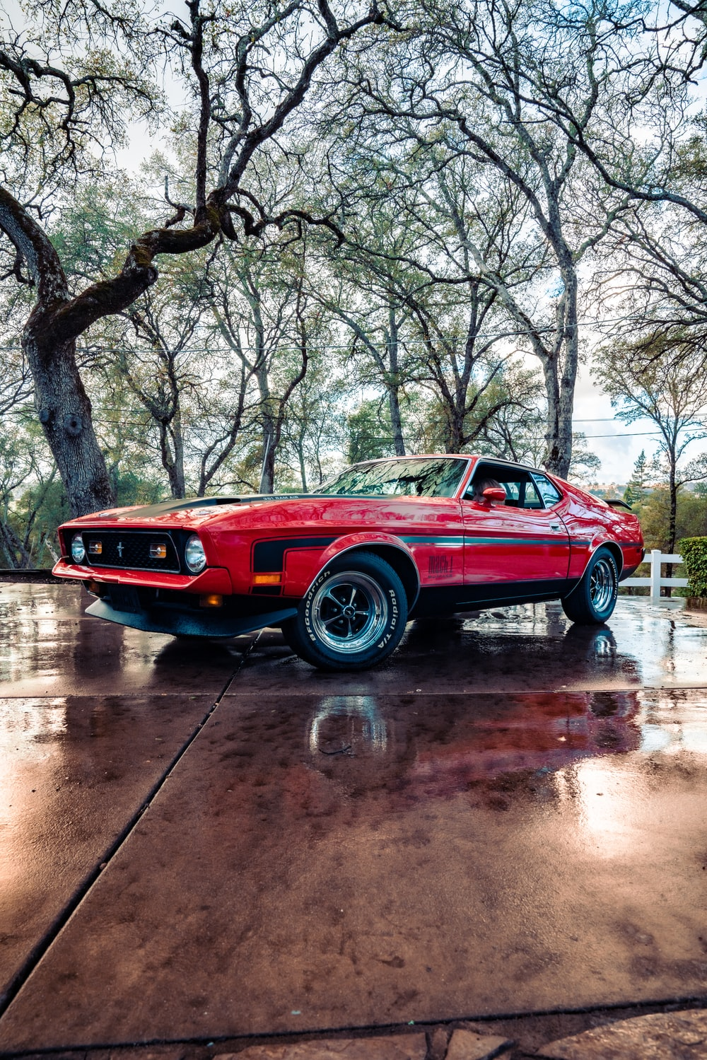 red chevrolet camaro on road