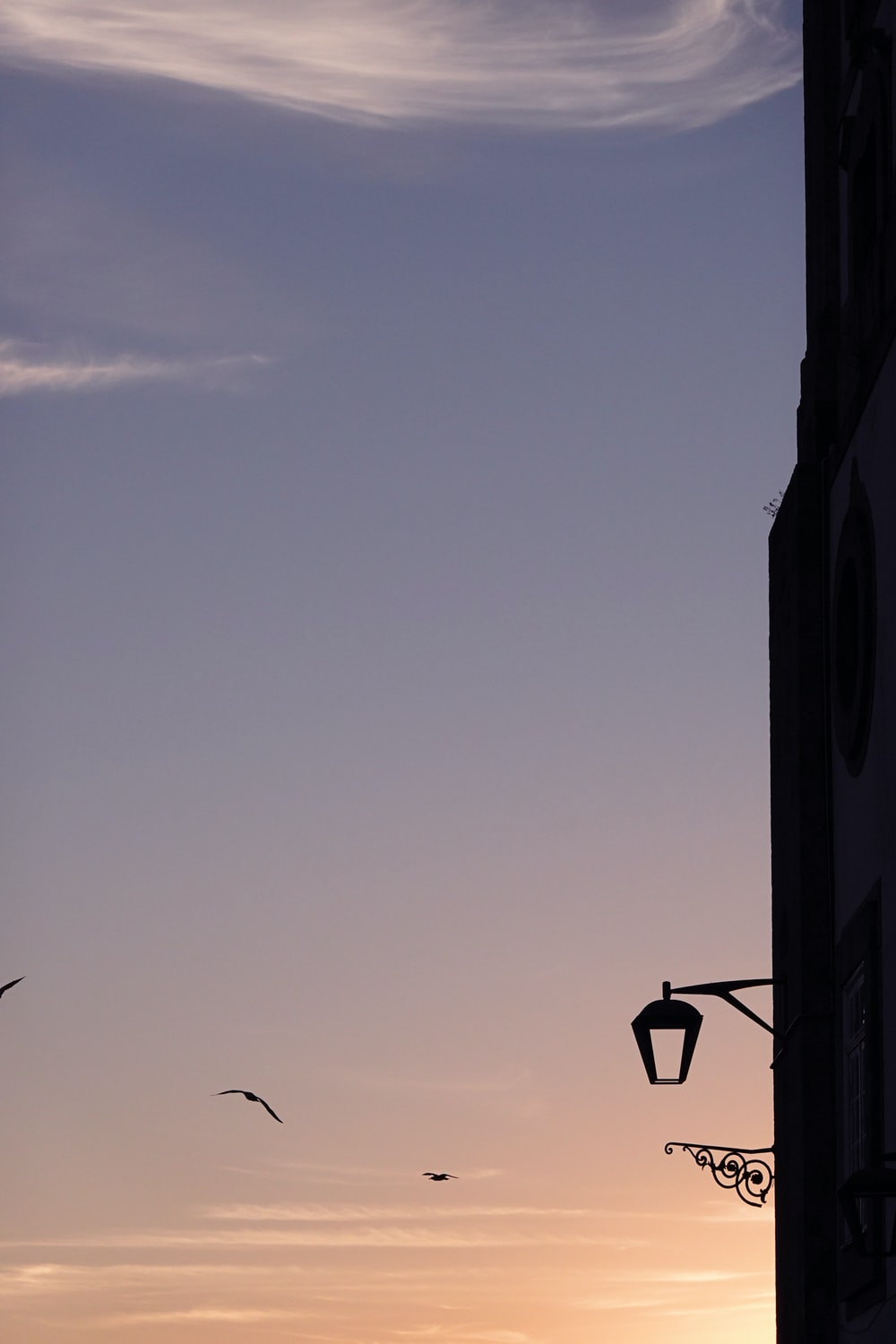 silhouette of street light during daytime