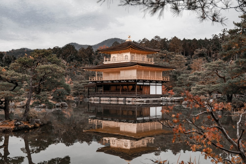 brown wooden house near green trees and lake during daytime