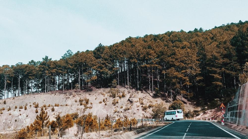 white van on road near trees during daytime