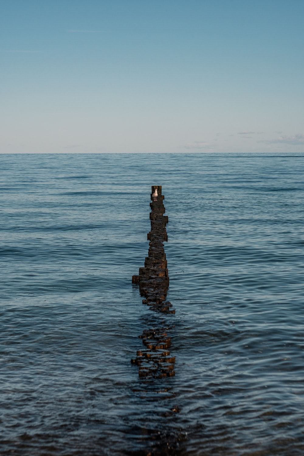 brown and black concrete dock on sea during daytime