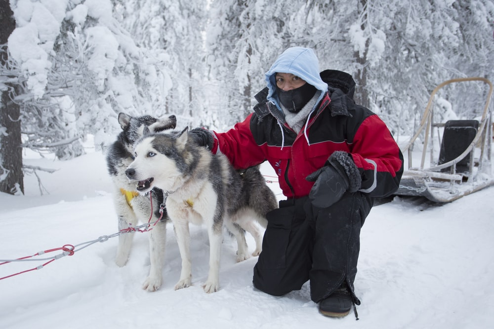 woman in black jacket and red backpack holding white and black siberian husky on snow covered