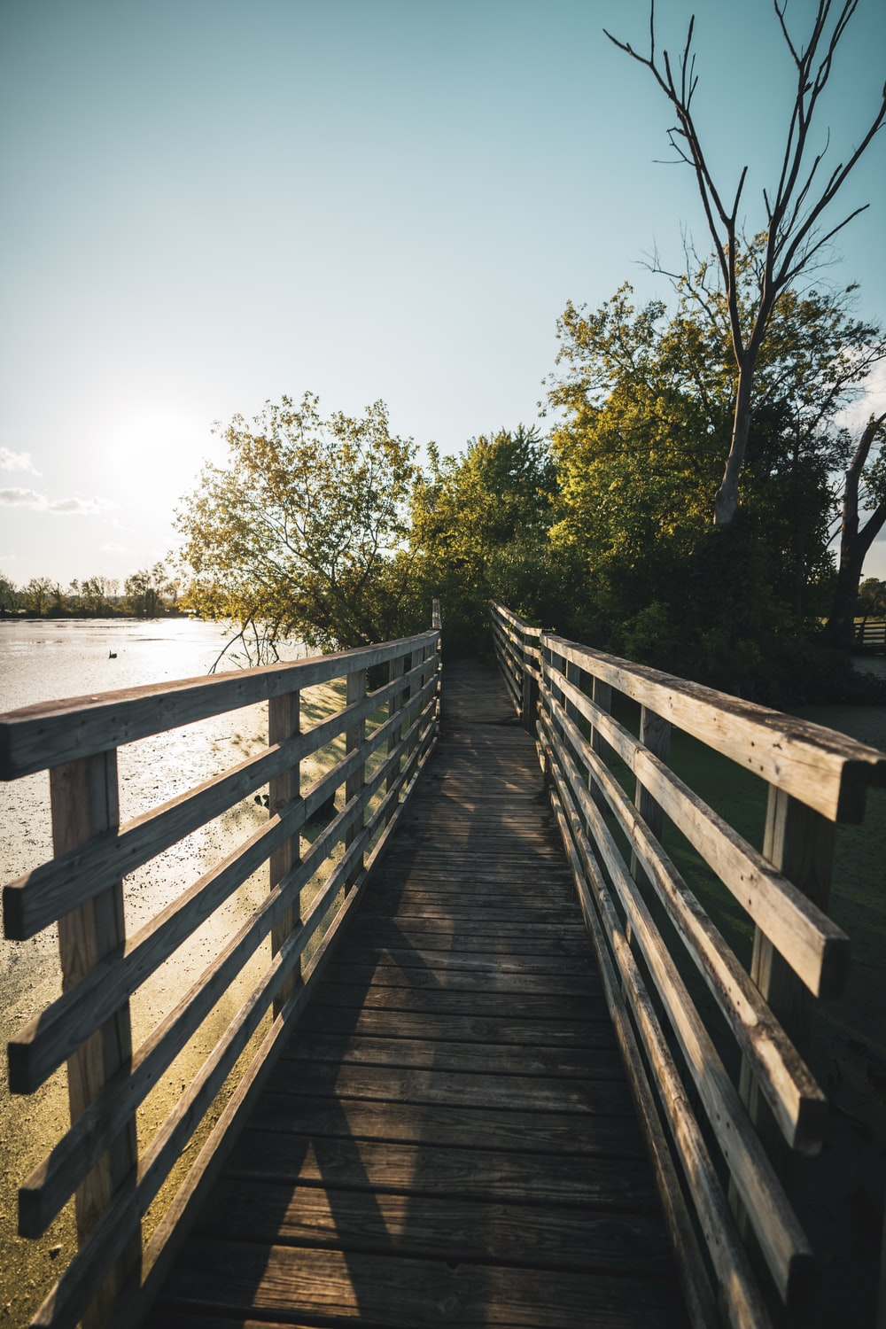 brown wooden bridge over body of water during daytime