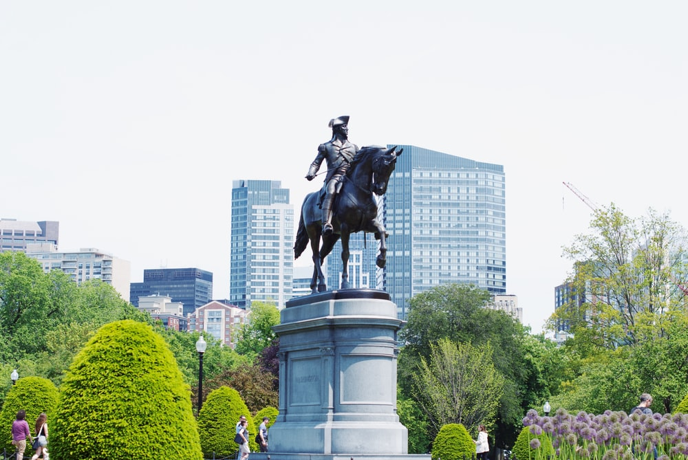 black horse statue near green trees and buildings during daytime
