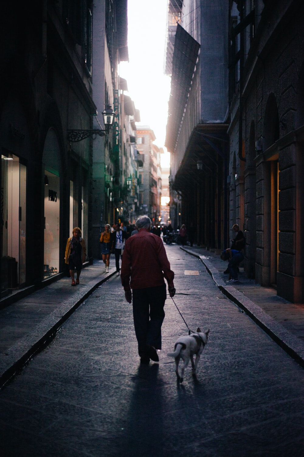man in red jacket walking on sidewalk with white short coat small dog during daytime